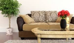 sofa reuphostery